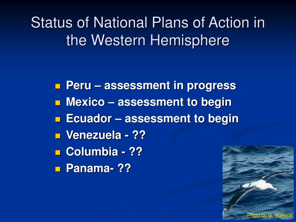 Status of National Plans of Action in the Western Hemisphere