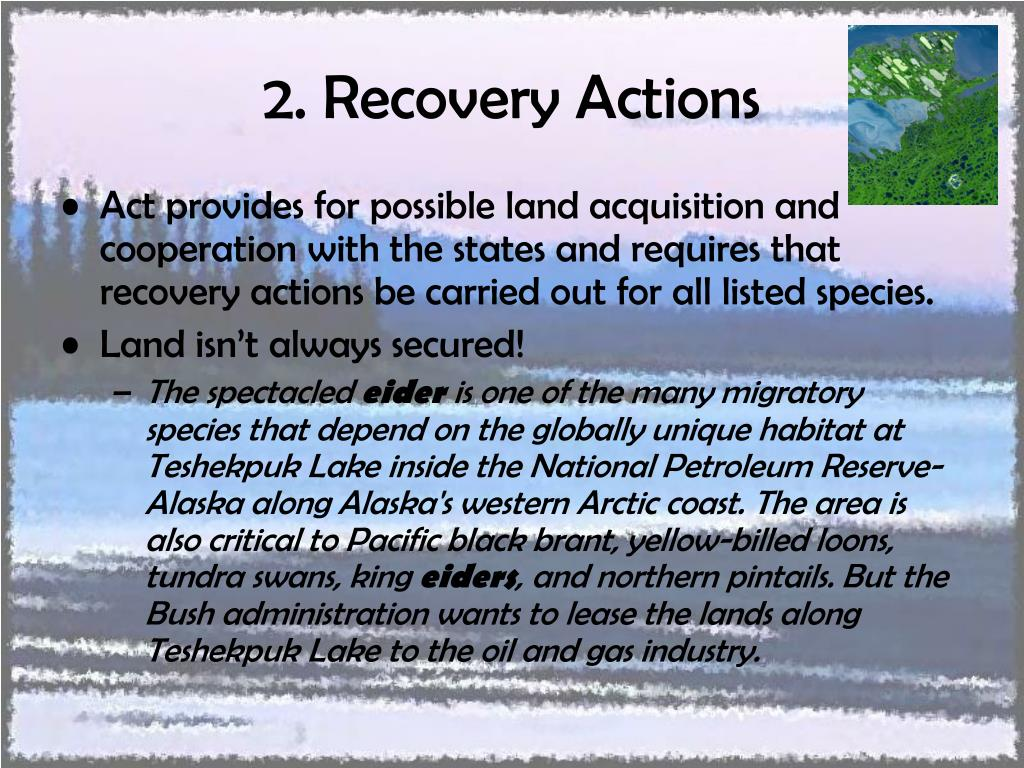 2. Recovery Actions