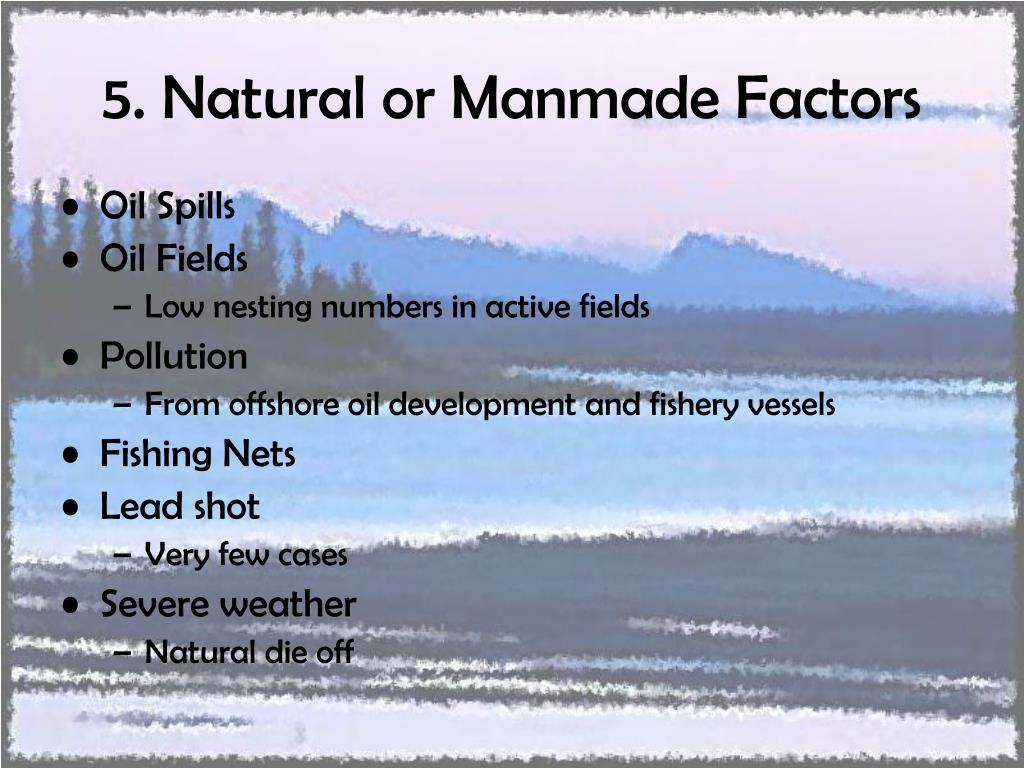 5. Natural or Manmade Factors