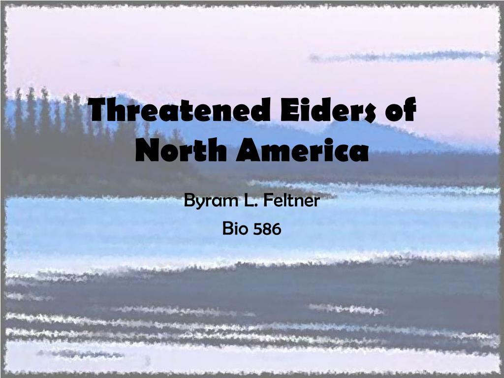 Threatened Eiders of North America