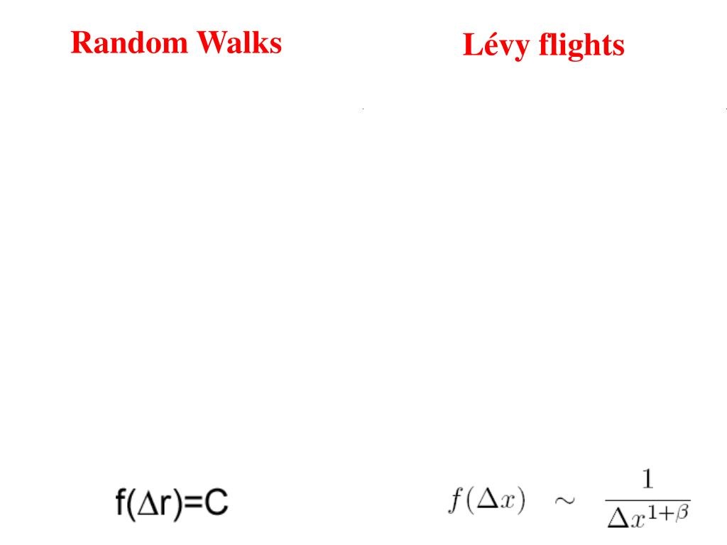 Random Walks