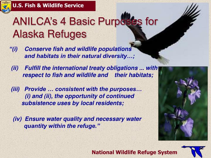 Anilca s 4 basic purposes for alaska refuges l.jpg