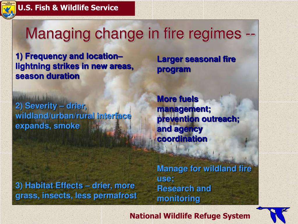 Managing change in fire regimes --