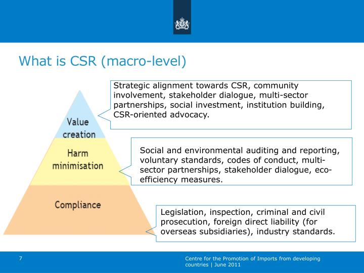 Strategic alignment towards CSR, community involvement, stakeholder dialogue, multi-sector partnerships, social investment, institution building, CSR-oriented advocacy.