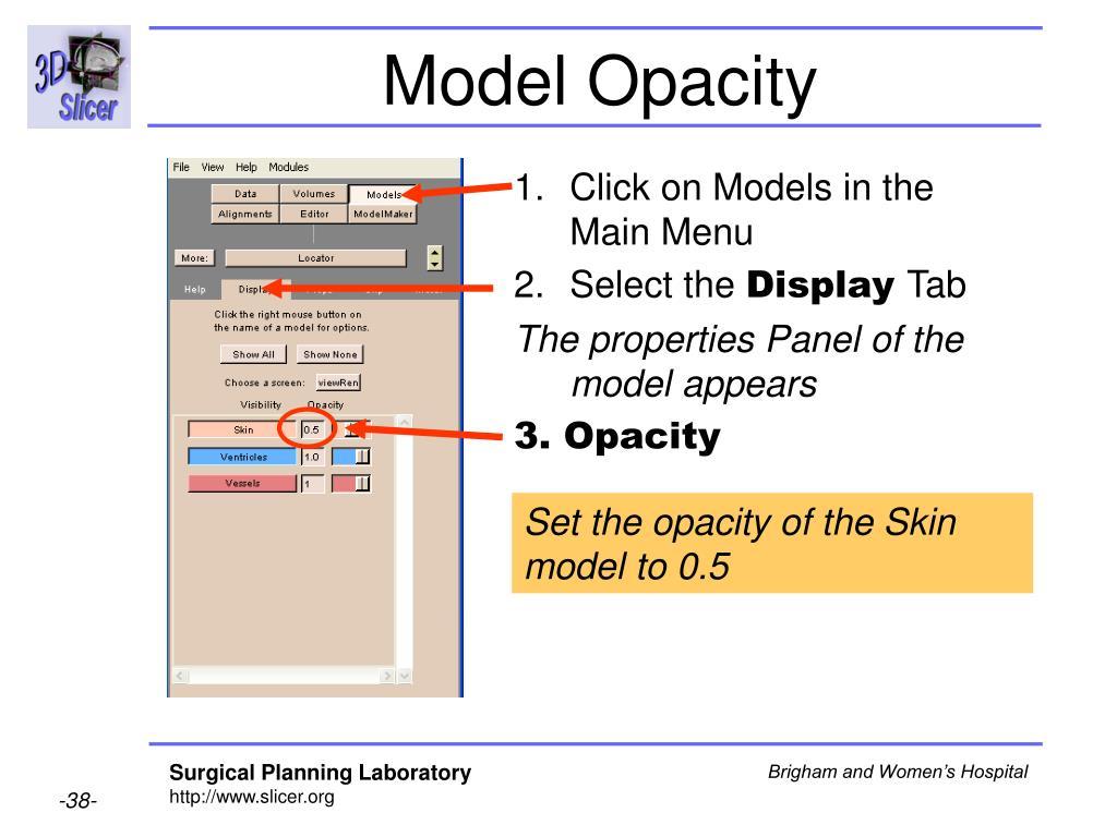 Model Opacity