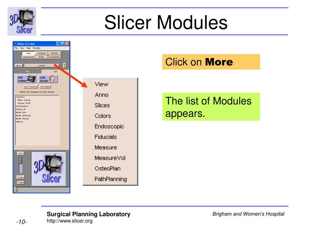 Slicer Modules