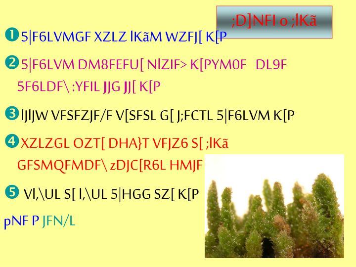 ;D]NFI o ;lKã