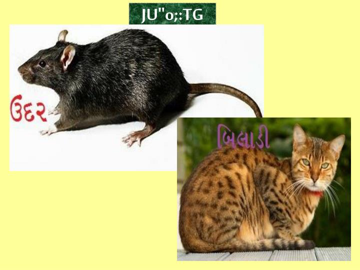 "JU""o;:TG"