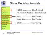 slicer modules tutorials