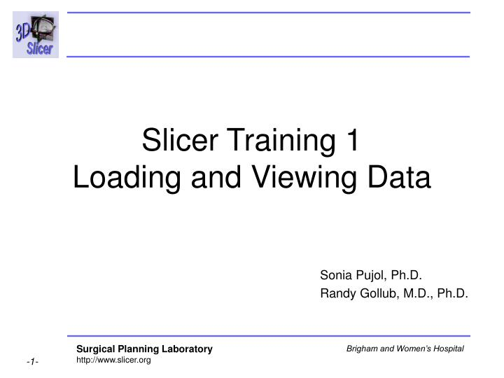 Slicer training 1 loading and viewing data l.jpg