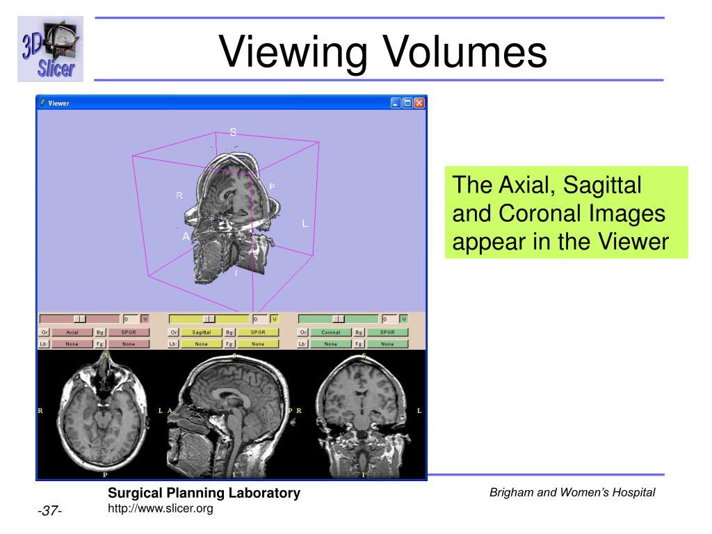 Viewing Volumes