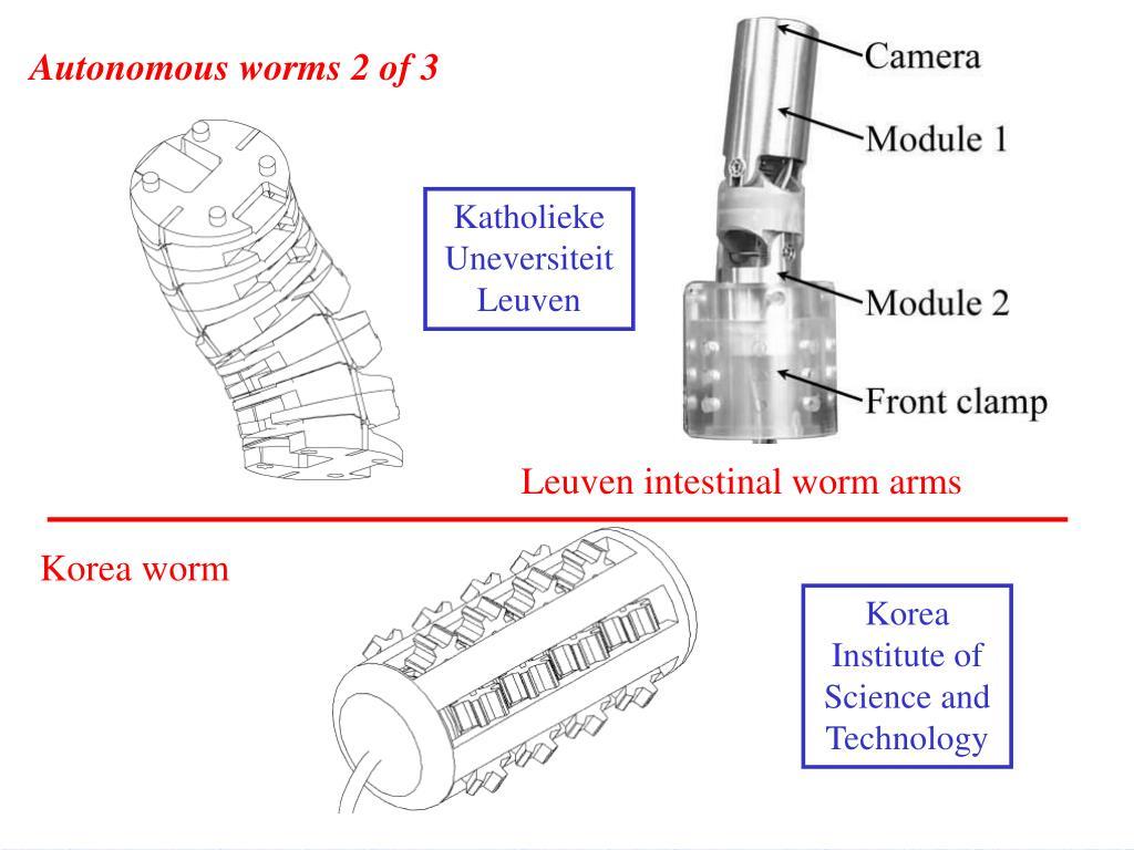 Autonomous worms 2 of 3