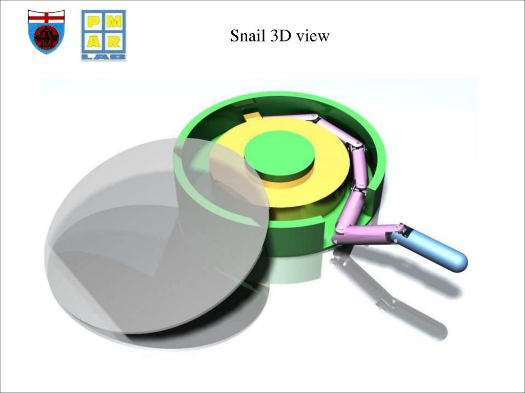 Snail 3D view