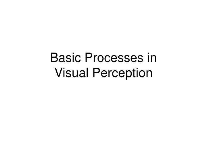 Basic processes in visual perception