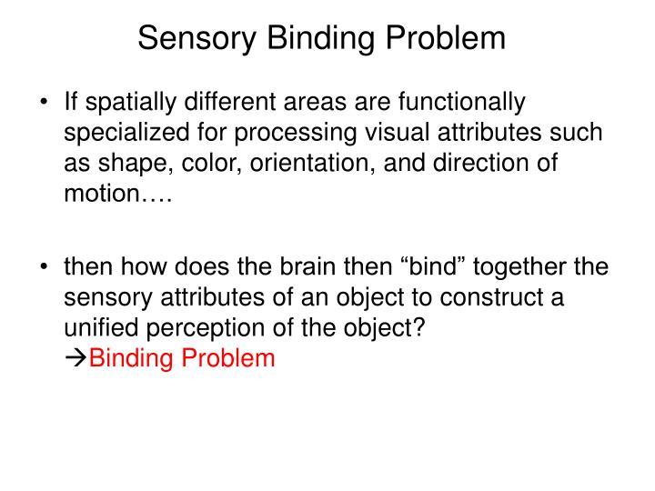 Sensory Binding Problem
