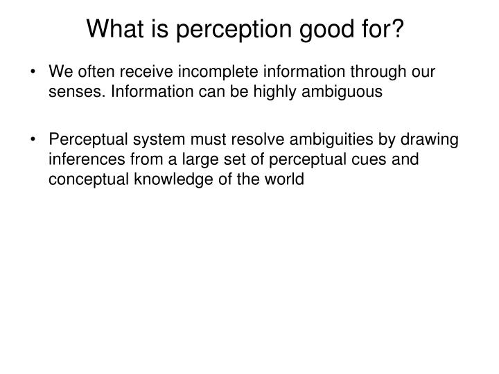 What is perception good for