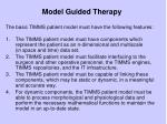 model guided therapy