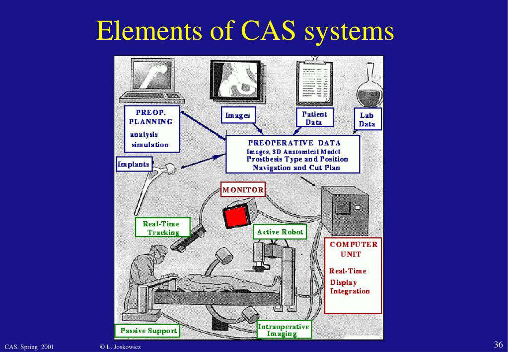 Elements of CAS systems