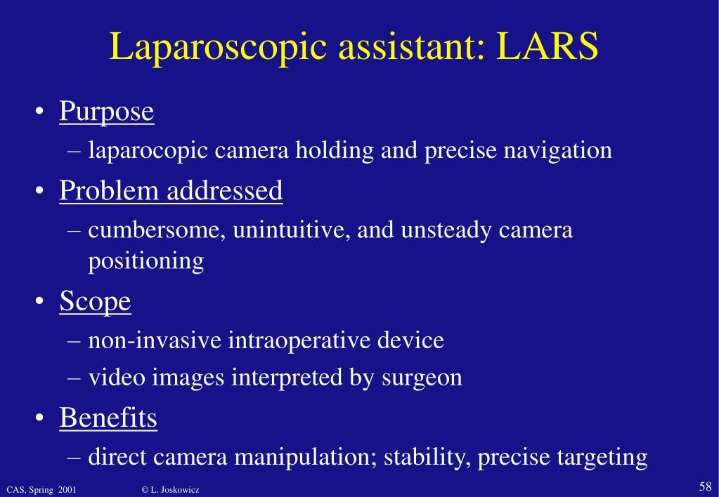 Laparoscopic assistant: LARS