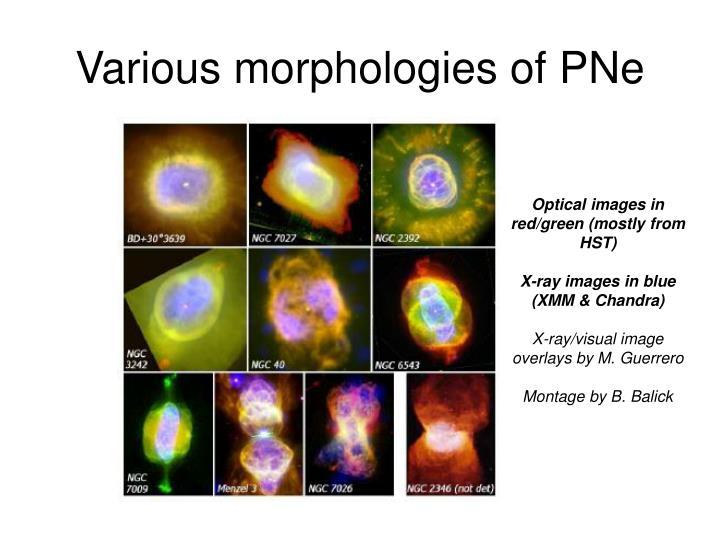 Various morphologies of PNe