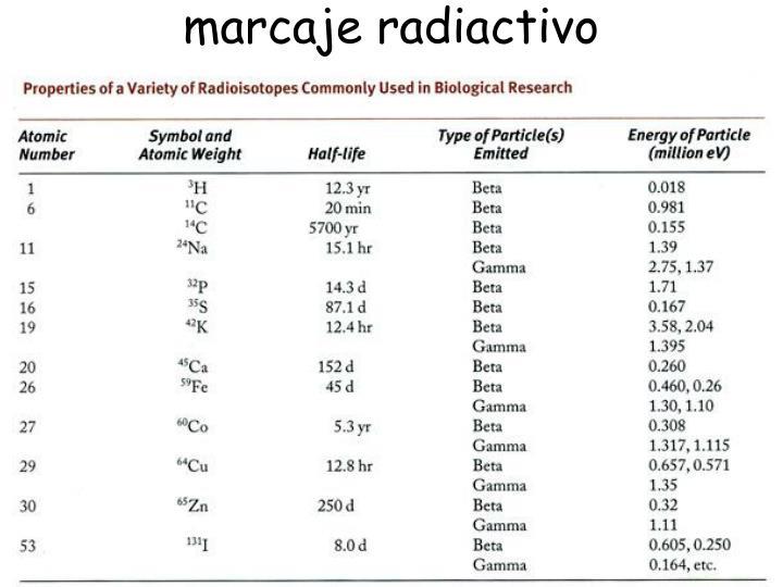 marcaje radiactivo