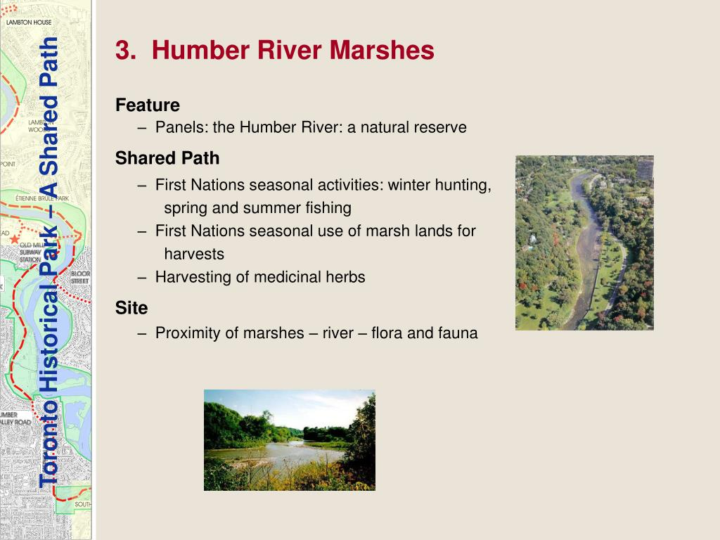 3.  Humber River Marshes