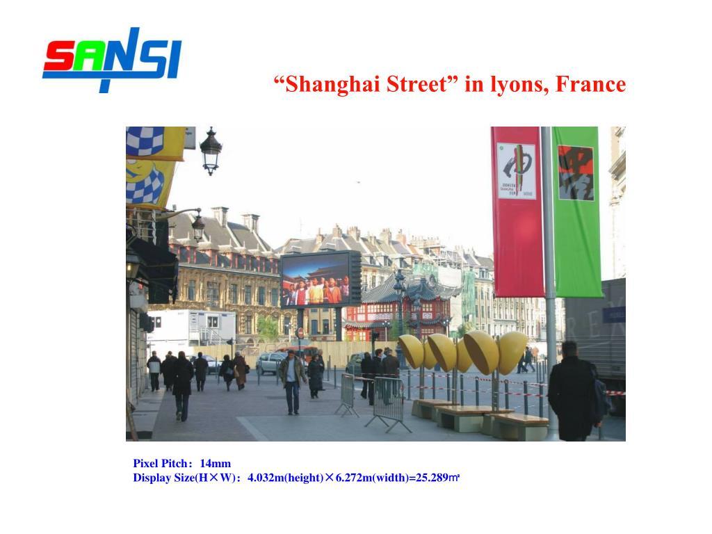"""Shanghai Street"" in lyons, France"