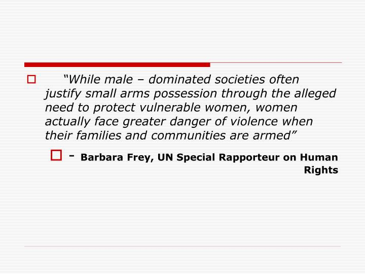 """""""While male – dominated societies often justify small arms possession through the alleged need to protect vulnerable women, women actually face greater danger of violence when their families and communities are armed"""""""