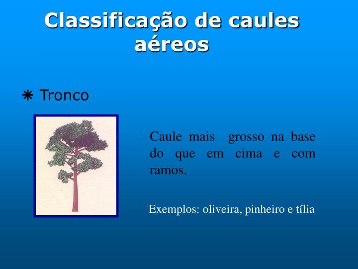 Classificação de caules aéreos