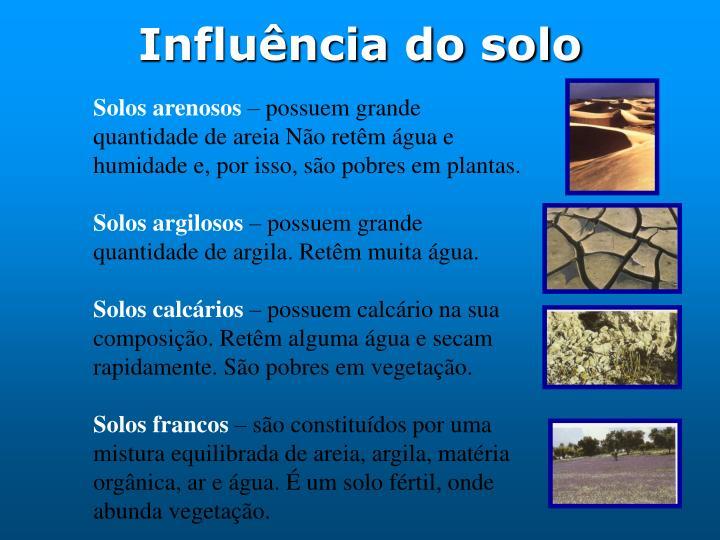 Influência do solo