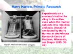 harry harlow primate research