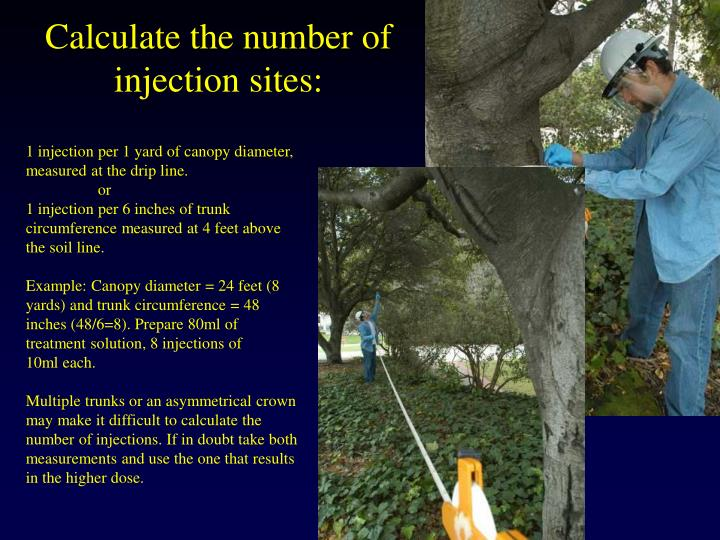 Calculate the number of injection sites: