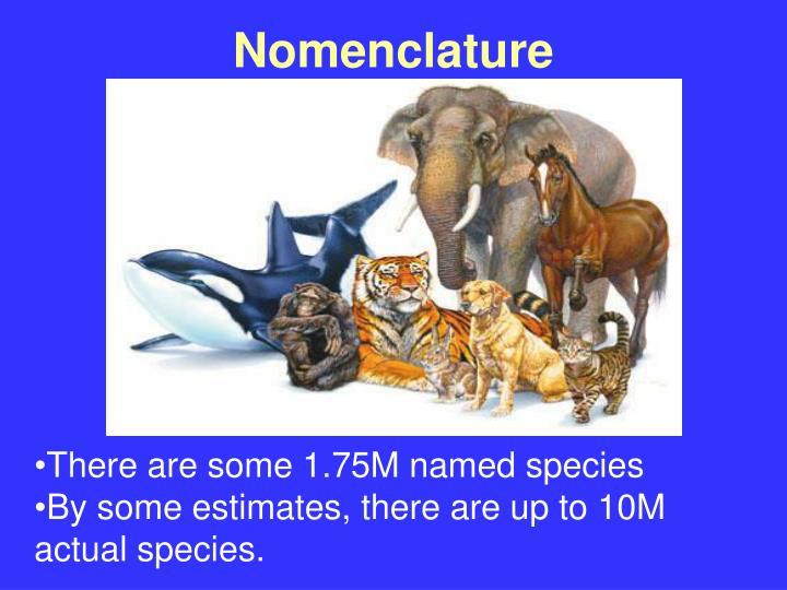 Nomenclature