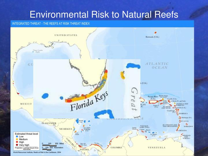 Environmental Risk to Natural Reefs
