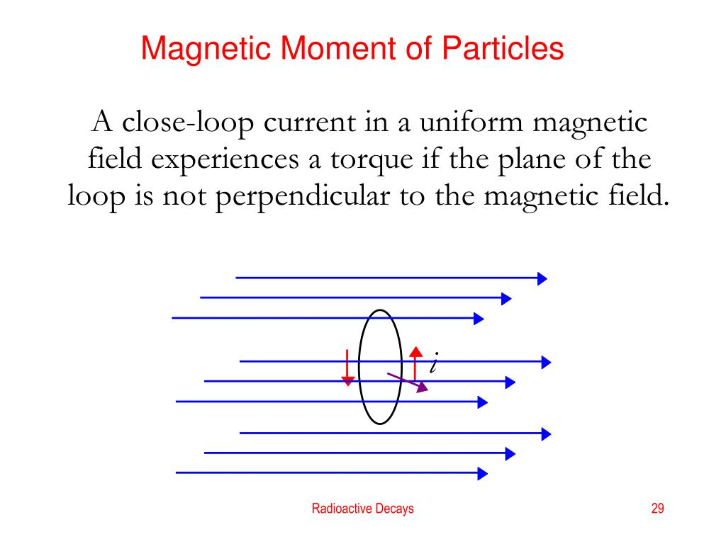 Magnetic Moment of Particles