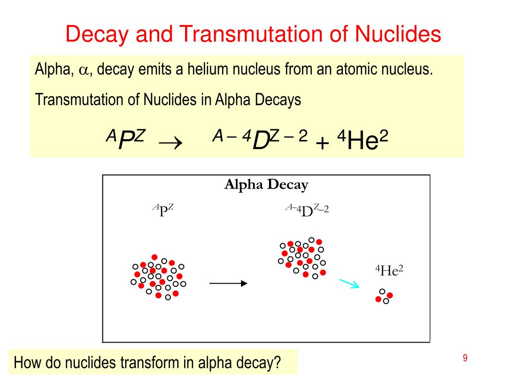 Decay and Transmutation of Nuclides