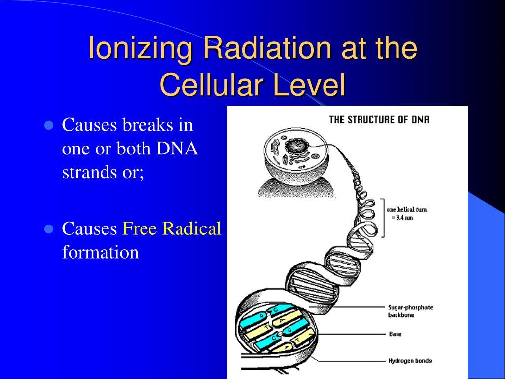 Ionizing Radiation at the Cellular Level