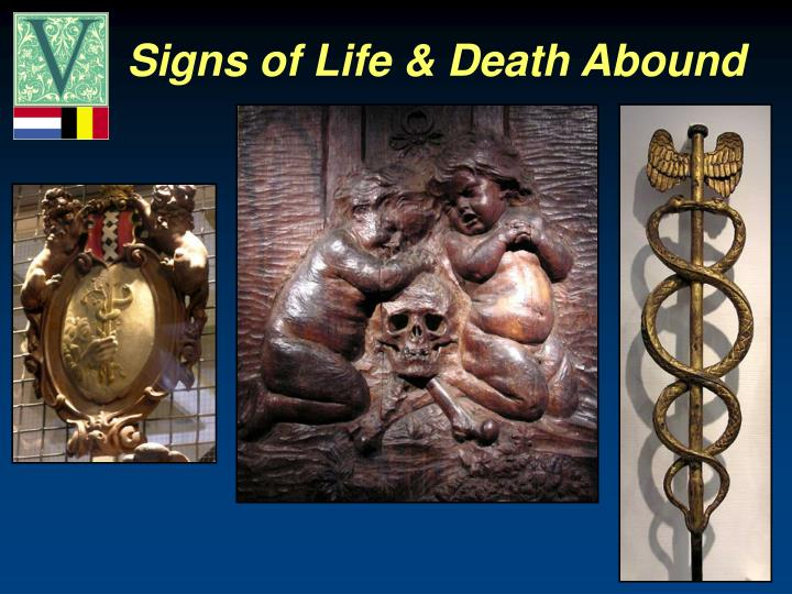 Signs of Life & Death Abound