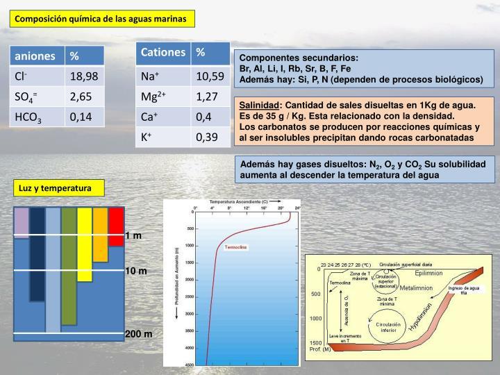 Composición química de las aguas marinas