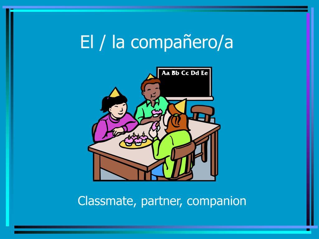 El / la compañero/a
