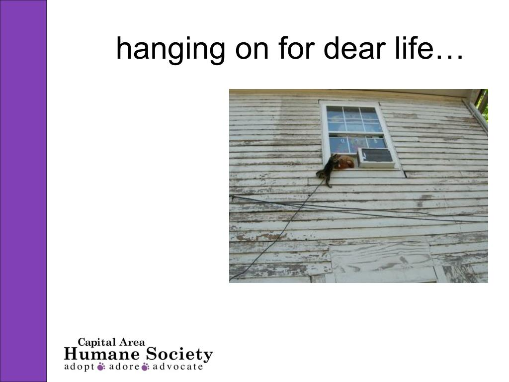 hanging on for dear life…