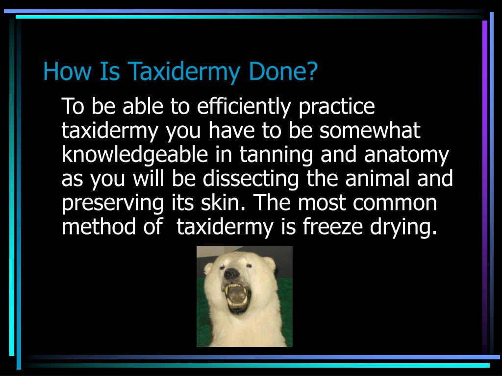How Is Taxidermy Done?