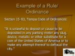 example of a rule ordinance