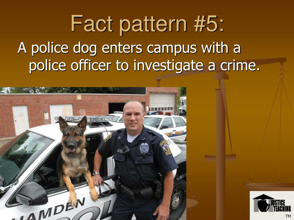Fact pattern #5:
