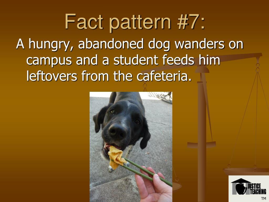 Fact pattern #7: