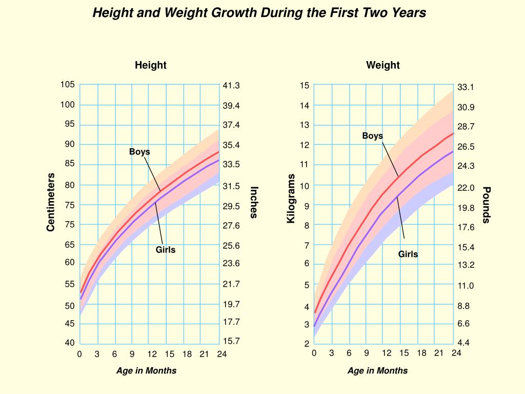 Height and Weight Growth During the First Two Years