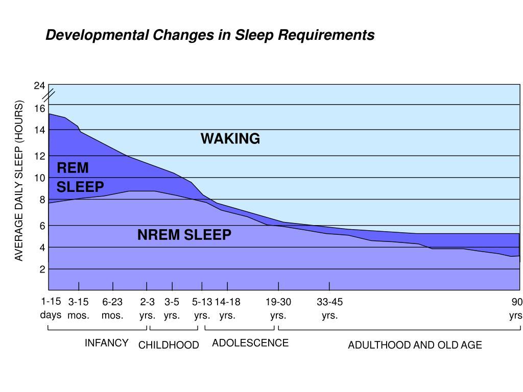Developmental Changes in Sleep Requirements