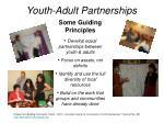 youth adult partnerships1