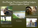 rice planting threshing and milling gadgets bamboo irrigation system