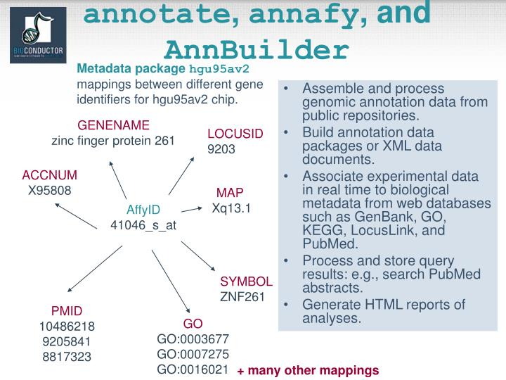 Assemble and process genomic annotation data from public repositories.